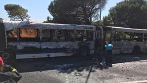 Passageiros fogem de autocarro em chamas em Oeiras. Veja as imagens