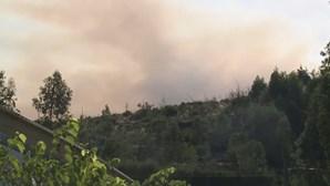 Incêndio combatido por 766 bombeiros em Oliveira de Frades