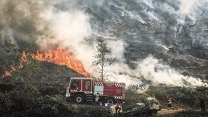101 pessoas foram presas por fogo posto este ano