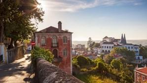 Trânsito interditado na serra de Sintra até sexta-feira devido a risco de incêndio