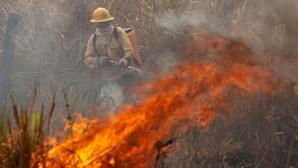 Quatro meios aéreos e 155 operacionais combatem fogo em Monção