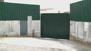 Novo surto em lar ilegal de Évora com 39 casos de Covid-19