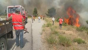 Fogo de Proença-a-Nova dado como dominado após três dias de combate às chamas