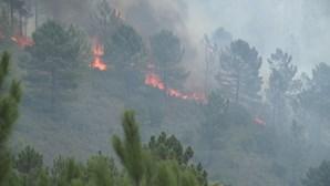 Frente de incêndio em Oleiros já está perto do Rio Zêzere