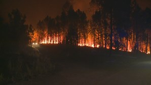 Fogo de Proença-a-Nova obriga a evacuar aldeias em perigo. Chamas combatidas por mais de 1000 bombeiros