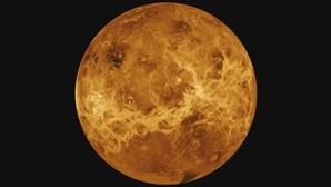 """Sondas espaciais com """"cunho"""" português vão passar perto de Vénus a 9 e 10 de agosto"""