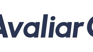 AvaliarCarro.com: conheça o valor do seu veículo em segundos!