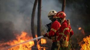 Maior fogo do ano teve mão criminosa