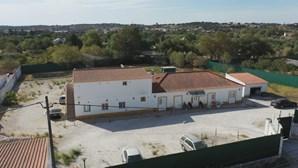 Oito pessoas do surto no lar ilegal de Évora recuperaram da Covid-19