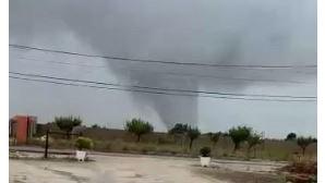 Árvores arrancadas e danos em casas: Tornado deixa rasto de destruição em Palmela