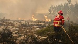 Época mais crítica dos incêndios termina hoje com balanço de cinco bombeiros mortos e 65 mil hectares ardidos
