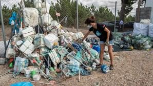 Seis toneladas de lixo recolhidas nas praias entre Tróia e Sines