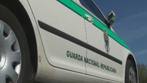 Motociclista apanhado sem documentos, sem luzes e sem capacete morde militar da GNR