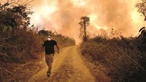 Maiores incêndios da história consomem Pantanal brasileiro
