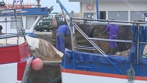 Pescadores da Póvoa de Varzim e Vila do Conde enfrentam segundo surto de Covid-19