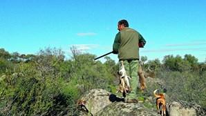 Pandemia desperta interesse pela caça
