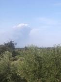 Dez meios aéreos e 150 bombeiros combatem chamas em Proença-a-Nova
