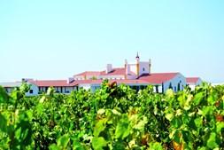 Torre de Palma Wine Hotel, em Monforte