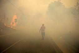 Incêndio alastrou de Proença a Nova para os concelhos de Oleiros e Castelo Branco