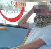 Em vez da máscara... homem usa cobra para tapar boca e nariz dentro de autocarro