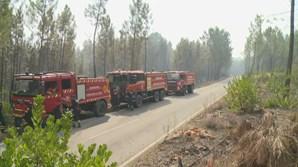 Bombeiros no incêndio de Proença-a-Nova