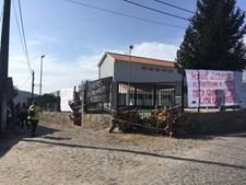 Troncos de árvores impediram arranque do ano letivo em Barcelos. GNR foi chamada