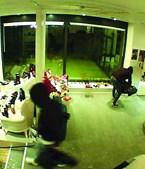 Ladrões filmados durante crime em sapataria de Valongo, na madrugada de ontem