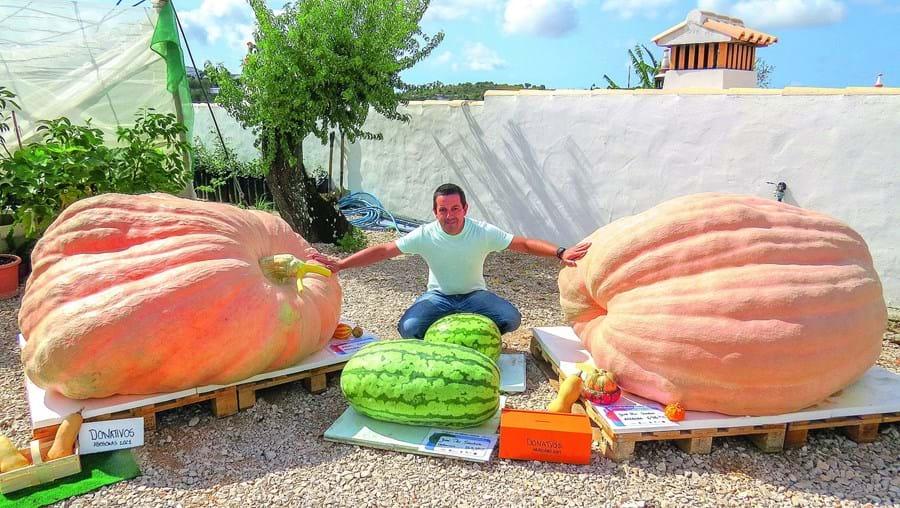 José Santos junto às abóboras e melancias premiadas, que estão em exposição dentro da sua propriedade