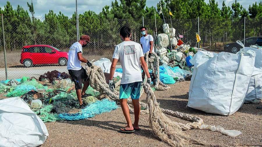 Voluntários procedem à recolha de lixo na costa. Projeto da Universidade de Coimbra quer utilizar drones