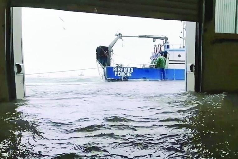 Lota de Peniche foi inundada