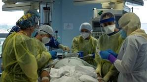 2316 Mortos | 118686 Pessoas Infetadas | 68877 Doentes Recuperados