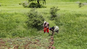 Cabo Verde reaproveita dessalinizadoras para responder à seca