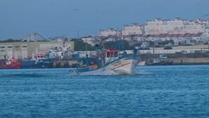 Dois tripulantes resgatados de veleiro abalroado por orcas no Cabo de Sines