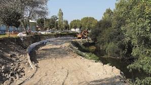 Quatro concelhos unidos para recuperar rio Leça