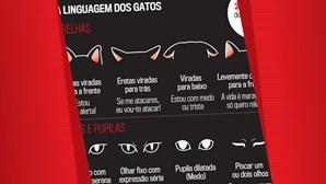 A linguagem dos gatos