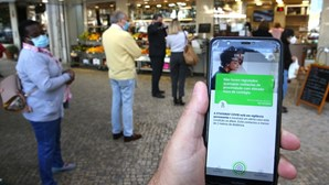 Aluno de Viana do Castelo deteta falha na app 'Stayaway Covid'