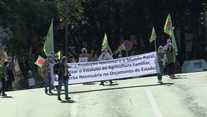 Agricultores em protesto exigem ajudas à agricultura familiar