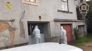 PJ descobre esconderijo de grupo terrorista em Coimbra e apreende material explosivo