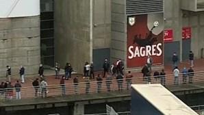 Vieira, Noronha ou Gomes da Silva? Sócios do Benfica decidem futuro do clube