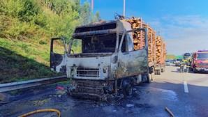 Camião destruído pelas chamas junto ao acesso à A1 em Santa Maria da Feira. Veja as imagens