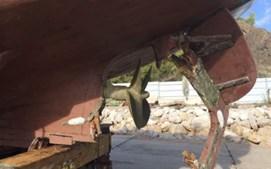 Orcas atacam embarcações de pesca em Sesimbra