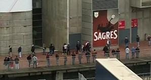Sócios do Benfica decidem futuro do clube. Eleições no Estádio da Luz, em Lisboa