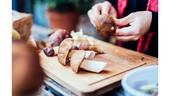 Seis alimentos que ajudam o sistema imunitário a combater doenças
