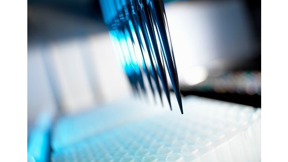 Cientistas apresentam vacina promissora contra o cancro