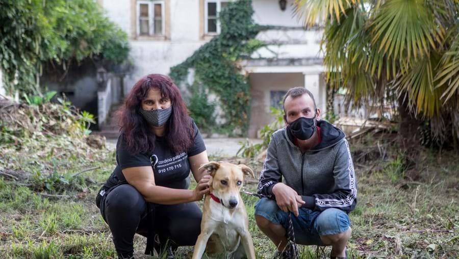 Olga Ruth da Condeixa Patudos cruzou-se com Luís Pereira e com a cadela Kika na estação de comboios de Coimbra