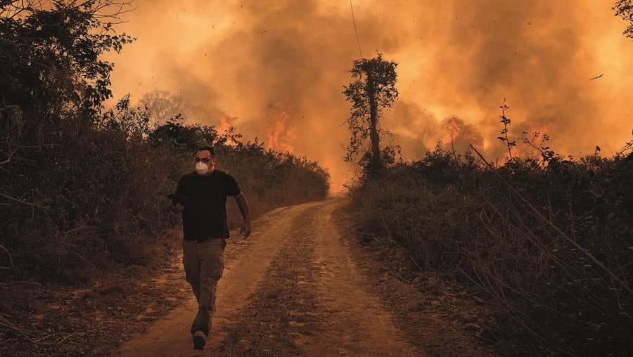 Incêndios no Pantanal estão a bater todos os recordes este ano. Até ao momento foram registados 21 084 incêndios, mais do dobro do ano passado