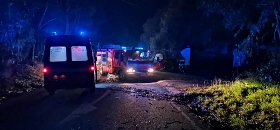 Despiste provoca dois feridos em Odemira