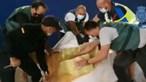 Navio intercetado com cocaína duas vezes em Espanha e no Brasil