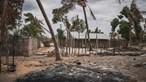 328 escolas primárias destruídas nos ataques em Moçambique