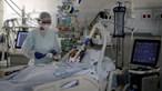 GRÁFICOS | Há mais de 5 mil recuperados da Covid-19 mas número de internados em cuidados intensivos continua elevado: 517